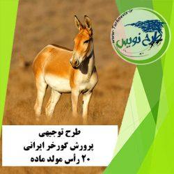 طرح توجیهی پرورش گورخر ایرانی 20 رأس