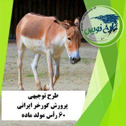 طرح توجیهی پرورش گورخر ایرانی 60 رأس