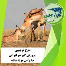 طرح توجیهی پرورش گورخر ایرانی 80 رأس