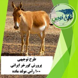 طرح توجیهی پرورش گورخر ایرانی 100 رأس
