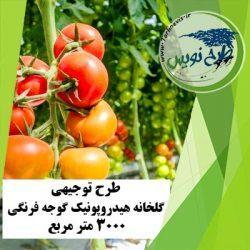 طرح توجیهی گلخانه هیدروپونیک گوجه فرنگی 3000 متر مربع