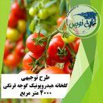 طرح توجیهی گلخانه هیدروپونیک گوجه فرنگی ۴۰۰۰ متر مربع