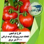 طرح توجیهی گلخانه هیدروپونیک گوجه فرنگی ۶۰۰۰ متر مربع