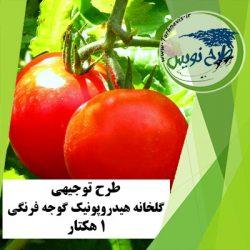 طرح توجیهی گلخانه هیدروپونیک گوجه فرنگی 1 هکتار