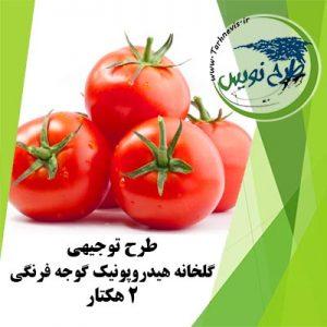 طرح توجیهی گلخانه هیدروپونیک گوجه فرنگی 2 هکتار