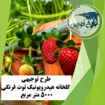 طرح توجیهی گلخانه هیدروپونیک توت فرنگی ۵۰۰۰ متر مربع