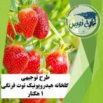 طرح توجیهی گلخانه هیدروپونیک توت فرنگی ۱ هکتار