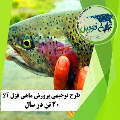 طرح توجیهی پرورش ماهی قزل آلا 20 تن در سال
