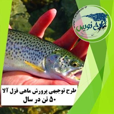 طرح توجیهی پرورش ماهی قزل آلا 50 تن در سال