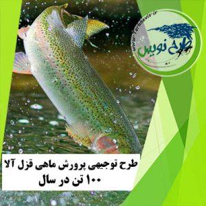طرح توجیهی پرورش ماهی قزل آلا ۱۰۰ تن در سال