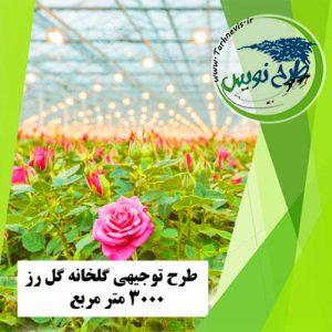 طرح توجیهی گلخانه گل رز 3000 متر مربع