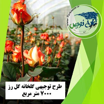 طرح توجیهی گلخانه گل رز 7000 متر مربع