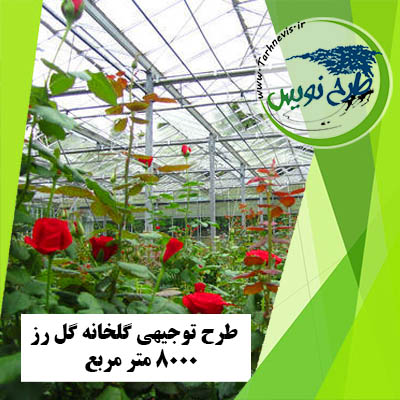 طرح توجیهی گلخانه گل رز 8000 متر مربع
