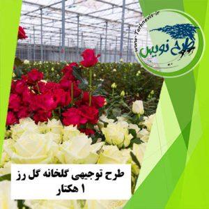 طرح توجیهی گلخانه گل رز 10000 متر مربع
