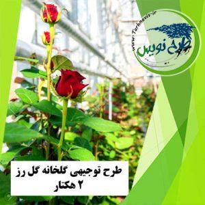 طرح توجیهی گلخانه گل رز 20000 متر مربع