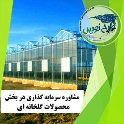 مشاوره سرمایه گذاری احداث گلخانه