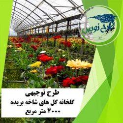طرح توجیهی گلخانه گل های شاخه بریده 4000 مترمربع