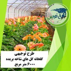 طرح توجیهی گلخانه گل های شاخه بریده 6000 مترمربع