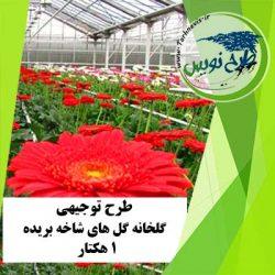 طرح توجیهی گلخانه گل های شاخه بریده 1 هکتار