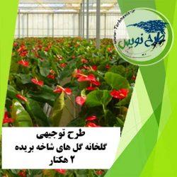 طرح توجیهی گلخانه گل های شاخه بریده 2 هکتار