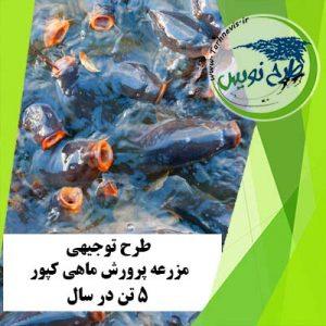طرح توجیهی پرورش ماهی کپور 5 تن