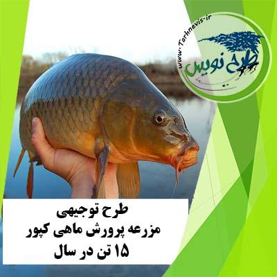 طرح توجیهی پرورش ماهی کپور 15 تن