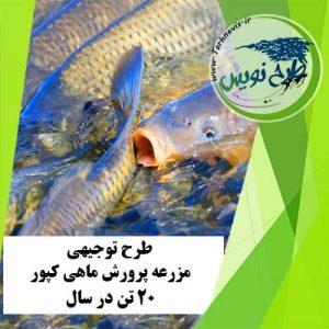 طرح توجیهی پرورش ماهی کپور 20 تن