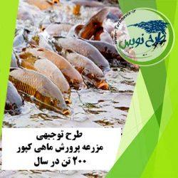 طرح توجیهی پرورش ماهی کپور 200 تن