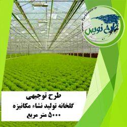 طرح توجیهی گلخانه تولید نشاء مکانیزه 5000 مترمربع