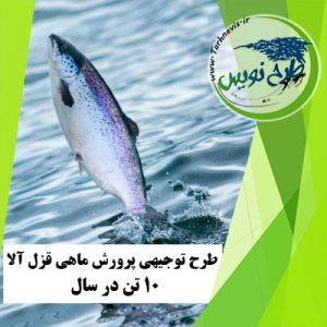 طرح توجیهی پرورش ماهی قزل آلا 10 تن در سال