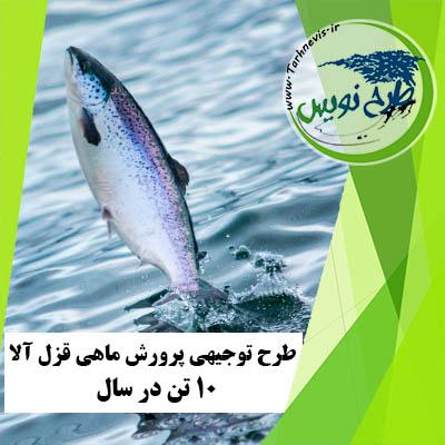 طرح توجیهی پرورش ماهی قزا آلا 10 تن