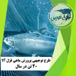 طرح توجیهی پرورش ماهی قزل آلا 40 تن در سال