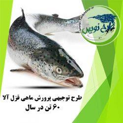 طرح توجیهی پرورش ماهی قزا آلا 60 تن