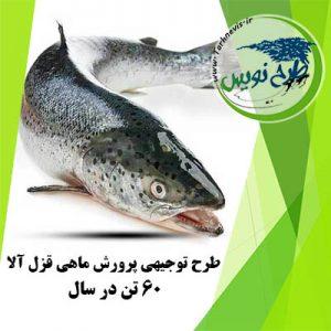 طرح توجیهی پرورش ماهی قزل آلا 60 تن در سال