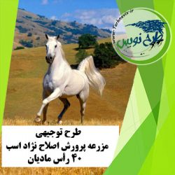 طرح توجیهی اصلاح نژاد اسب 40 رأس