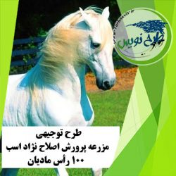 طرح توجیهی اصلاح نژاد اسب 100 رأس