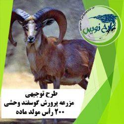 طرح توجیهی پرورش گوسفند وحشی 200 رأس