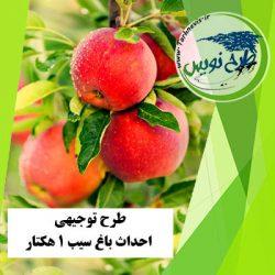 طرح توجیهی احداث باغ سیب 1 هکتار