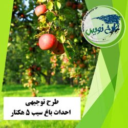 طرح توجیهی احداث باغ سیب 5 هکتار