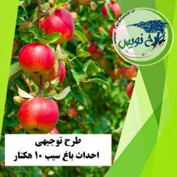 طرح توجیهی احداث باغ سیب 10 هکتار