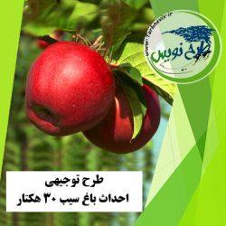 طرح توجیهی احداث باغ سیب 30 هکتار