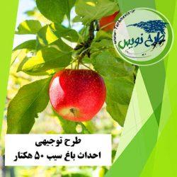 طرح توجیهی احداث باغ سیب 50 هکتار